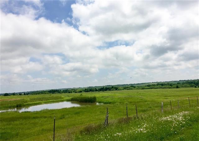 107 Lake Placid Run Run, Elgin, TX 78621 (#3336653) :: The ZinaSells Group