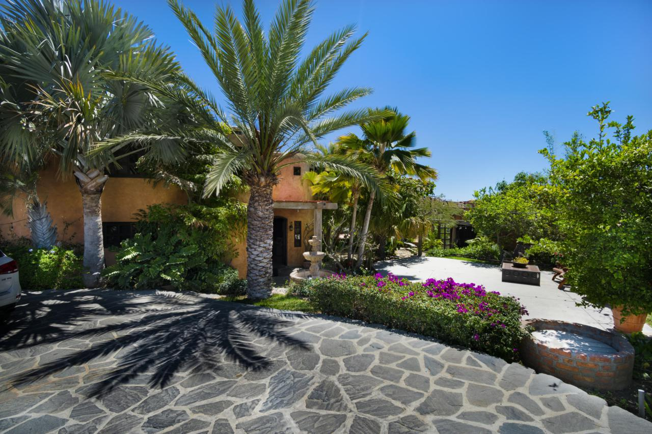 The Charming Home - Paseo Colinas - Photo 1