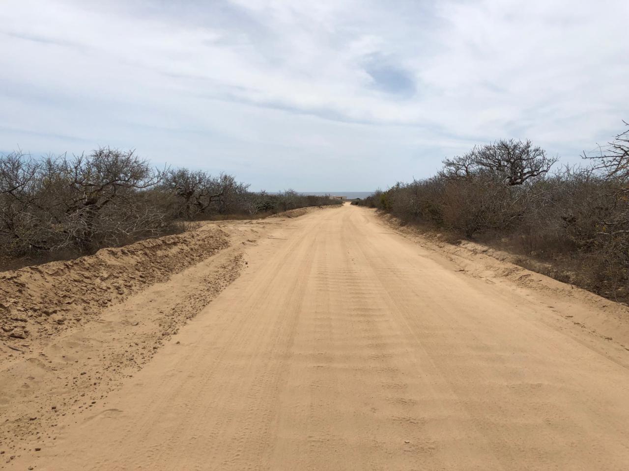68 Avenida De Las Haciendas Lot 68 Las Haciendas - Photo 1