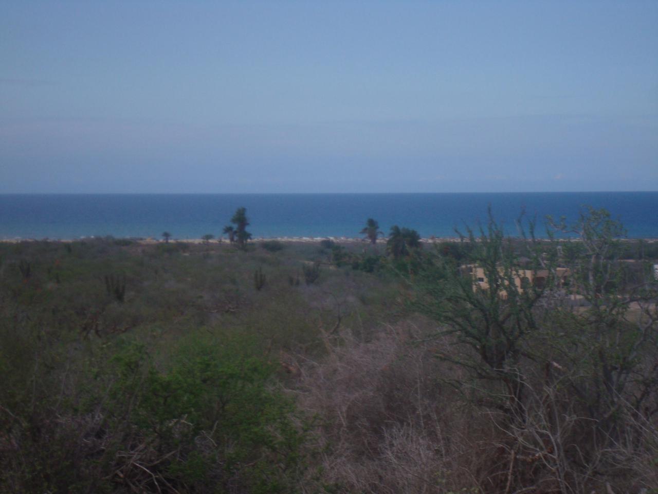 La Ribera- Cabo Pulmo Highway - Photo 1