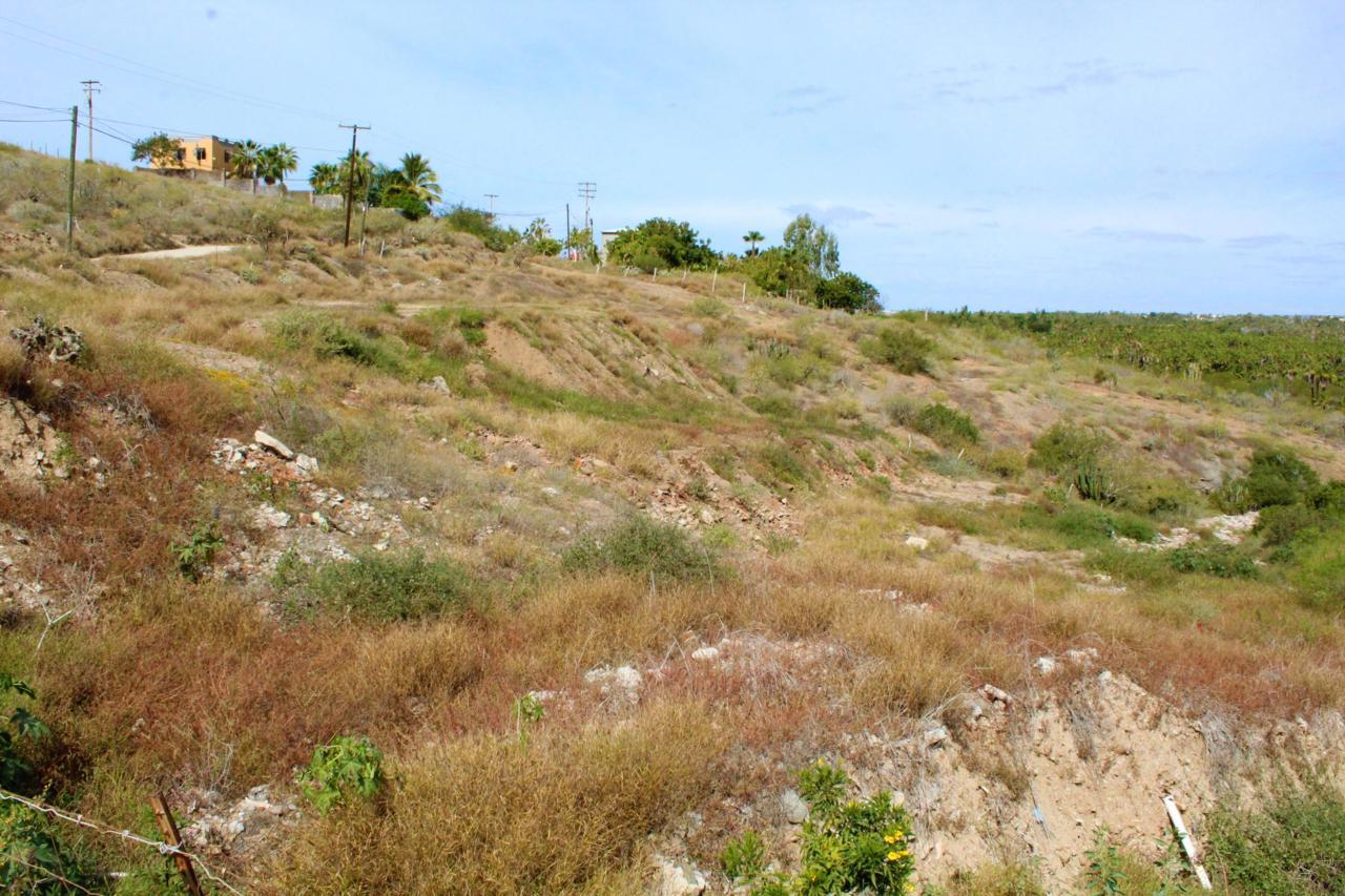 Guaycura - Photo 1