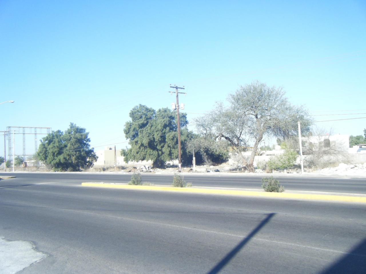 Potential Av.Las Garzas And Blvd.Colosio - Photo 1