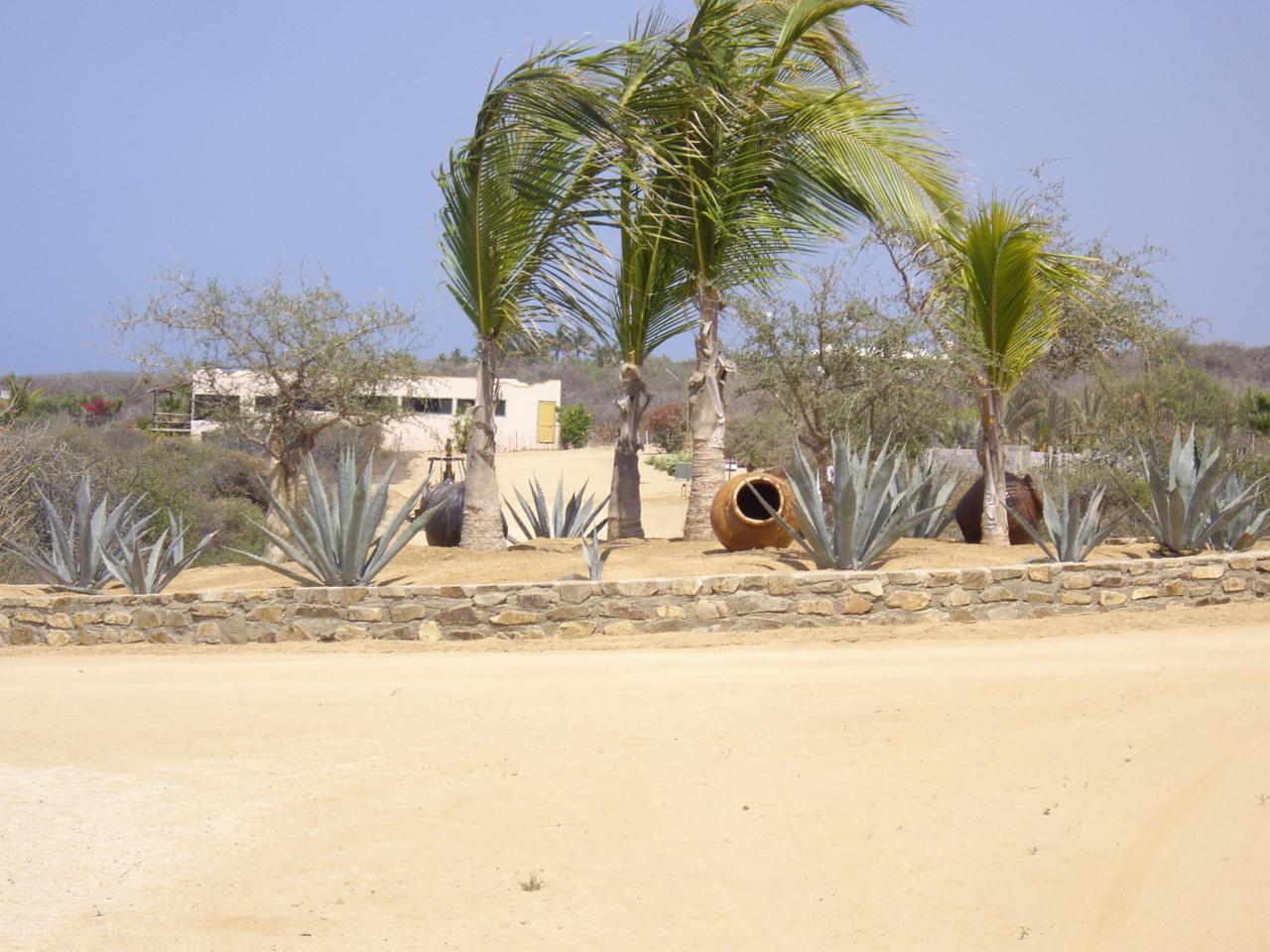 Corner Of Pez Espada Baja Sur - Photo 1