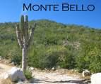 Monte Bello - Photo 7