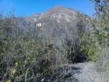Phase 2 - Cabo Pulmo - Photo 7