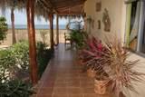 Buena Vista - Photo 12