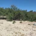 Beach Subdivition - Photo 4