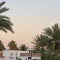 Palmilla Dunes - Photo 24