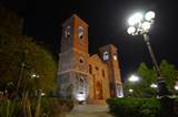 S/N Portobalandra - Photo 29