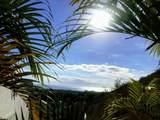 Paseo De Las Misiones - Photo 3