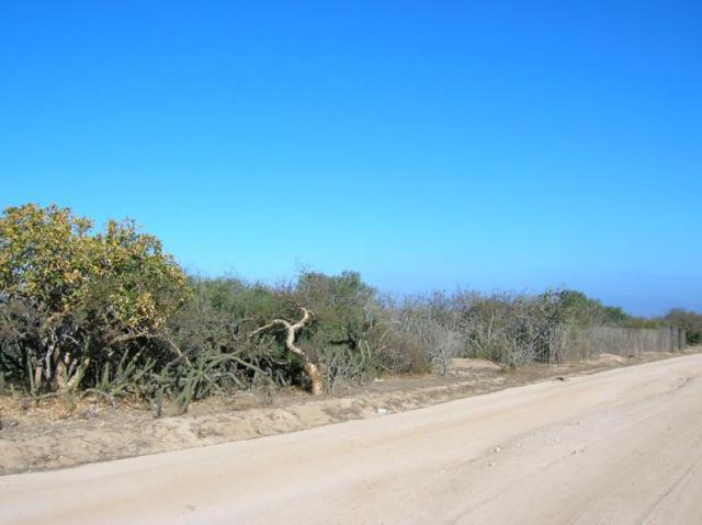Lot 46 Bahia Terranova, East Cape, BS  (MLS #10-539) :: Los Cabos Agent