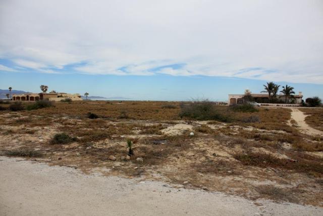 Buena Vista - Eureka Road, East Cape, BS  (MLS #13-642) :: Los Cabos Agent