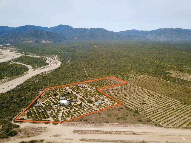 El Descanso, East Cape, BS  (MLS #15-1212) :: Ronival