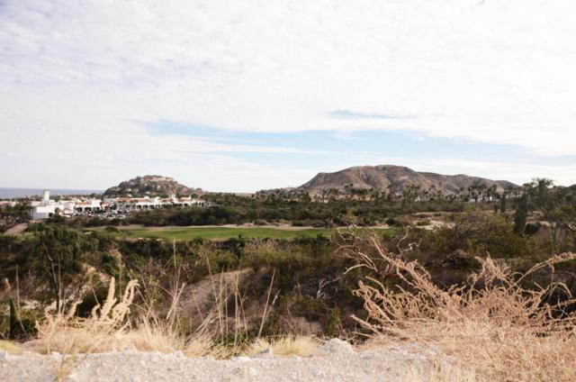 Palo Verde, San Jose Corridor, BS  (MLS #15-1621) :: Los Cabos Agent