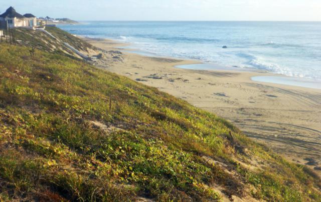 Coast Road S/N, East Cape, BS  (MLS #15-2238) :: Los Cabos Agent
