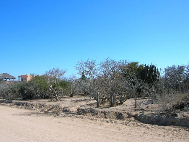 Lot 44 Bahia Terranova, East Cape, BS  (MLS #15-676) :: Los Cabos Agent