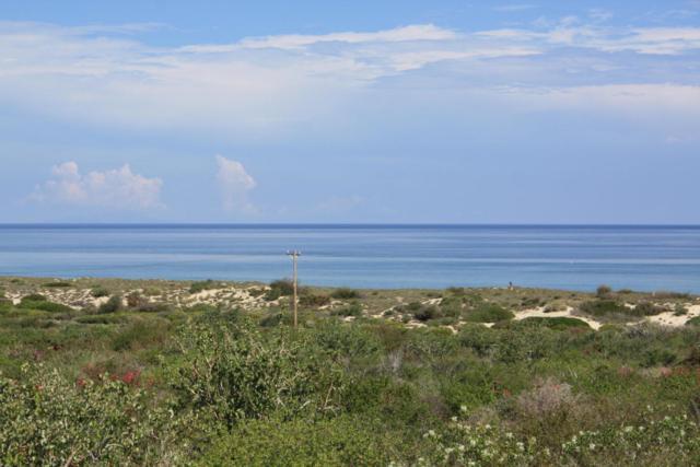 Palmas Y Surguidero Fraccion I, East Cape, BS  (MLS #16-1662) :: Ronival