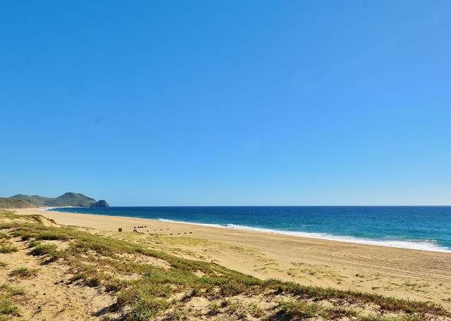 Oceanfront, Pacific, BS  (MLS #16-1849) :: Coldwell Banker Riveras