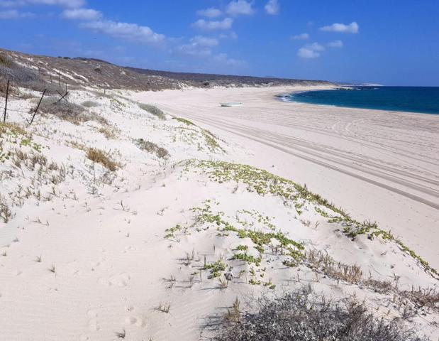 Lot 14 Camino Costero, East Cape, BS  (MLS #17-1221) :: Los Cabos Agent