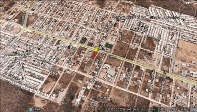 Av Cabos Y Calle Las Playitas, Cabo San Lucas, BS  (MLS #17-1411) :: Los Cabos Agent