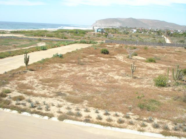Playa Agave Azul, Pacific, BS  (MLS #17-2119) :: Los Cabos Agent