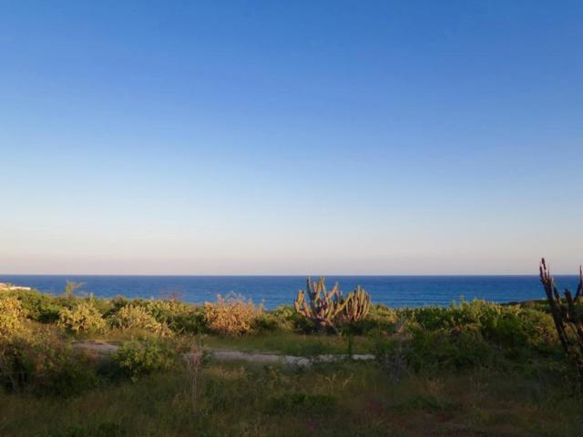 Camino Costero, East Cape, BS  (MLS #17-2193) :: Los Cabos Agent