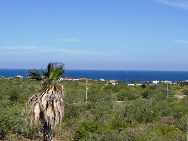 By Colinas Del Sol Street, East Cape, BS  (MLS #17-2539) :: Own In Cabo Real Estate