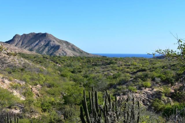 Camino Frailes-Cabo Pulmo, East Cape, BS  (MLS #18-1371) :: Los Cabos Agent
