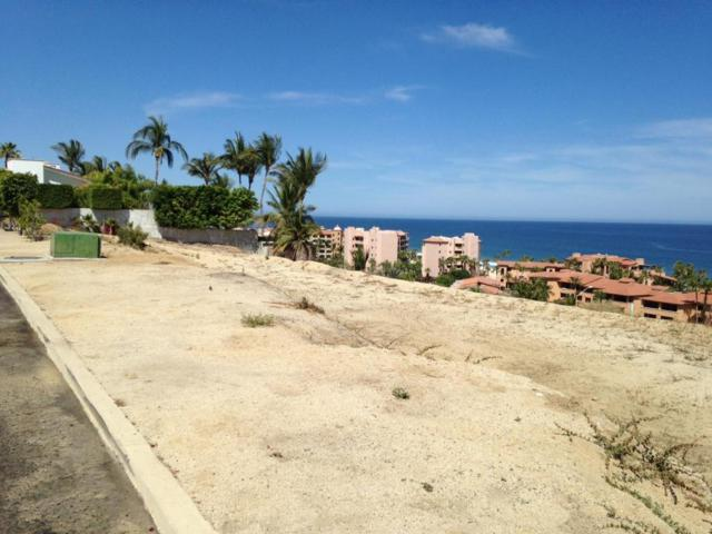 Buena Vista Manzana A, San Jose del Cabo, BS  (MLS #18-1631) :: Los Cabos Agent