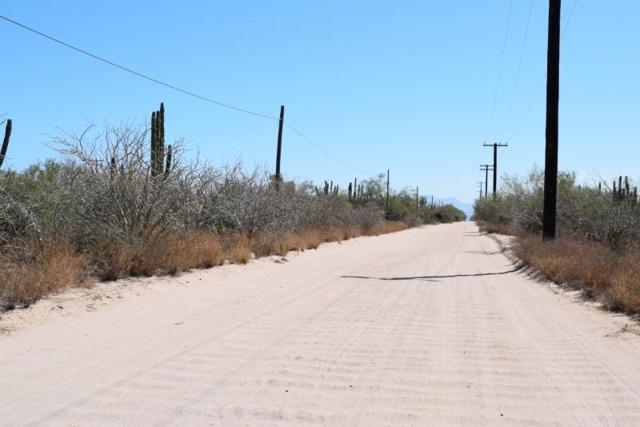 Calle Uno, La Paz, BS  (MLS #18-1690) :: Los Cabos Agent
