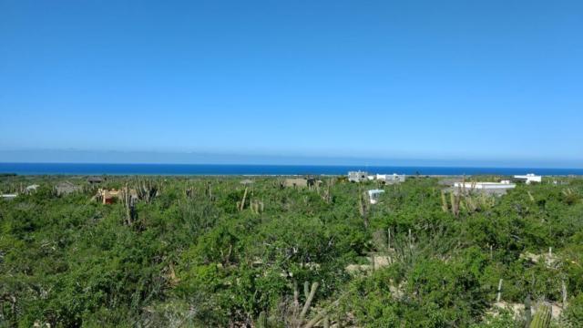 Camino A Las Playitas, Pacific, BS  (MLS #18-1784) :: Los Cabos Agent