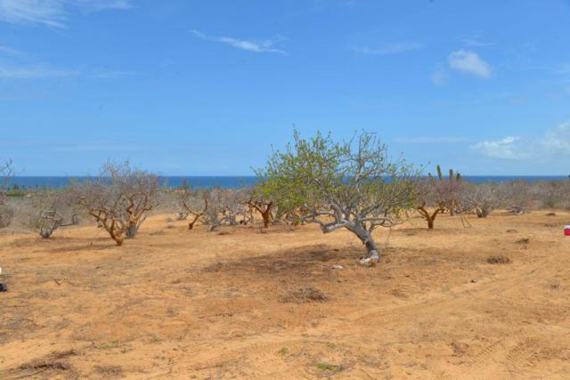 Haciendca Eureka, East Cape, BS  (MLS #18-1796) :: Los Cabos Agent