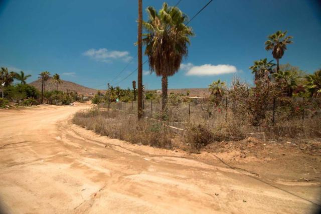 Calle Baja California, Pacific, BS  (MLS #18-2081) :: Los Cabos Agent
