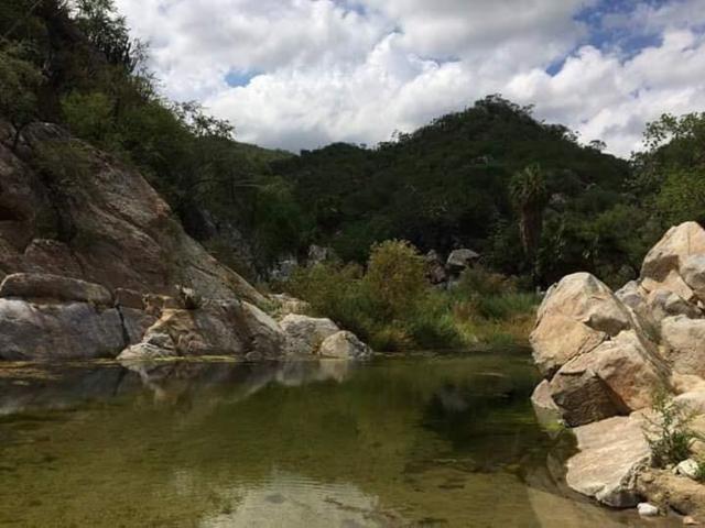 Sierra De La Laguna, La Paz, BS  (MLS #18-2107) :: Los Cabos Agent