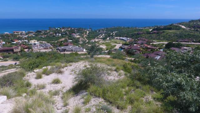 49 Section 1, San Jose Corridor, BS  (MLS #18-2184) :: Los Cabos Agent