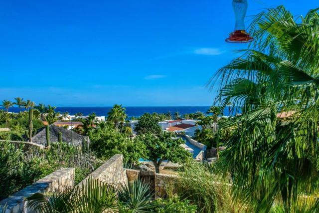 Camino De La Duna, Cabo San Lucas, BS  (MLS #18-2273) :: Los Cabos Agent