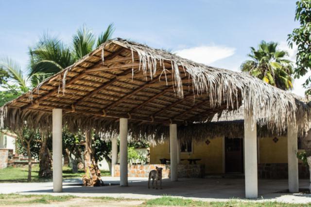 Todos Santos, Pacific, BS  (MLS #18-2287) :: Los Cabos Agent