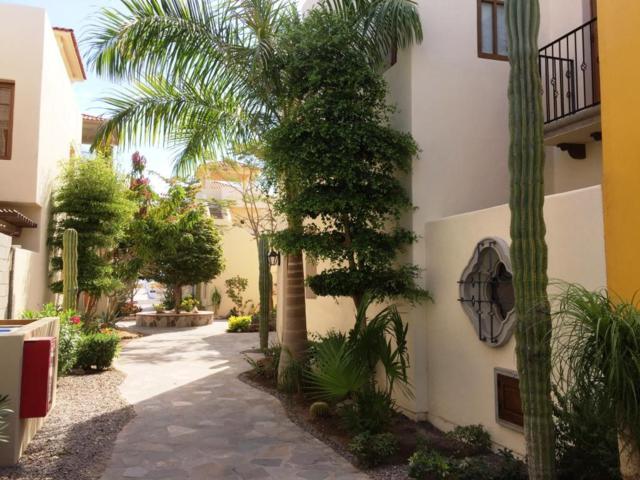 Avenida La Marina, Loreto, BS  (MLS #18-2359) :: Los Cabos Agent