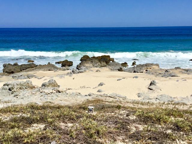 45 & 46 Calle El Tule Beachfront Costa De Oro Lots, East Cape, BS  (MLS #18-2592) :: Own In Cabo Real Estate