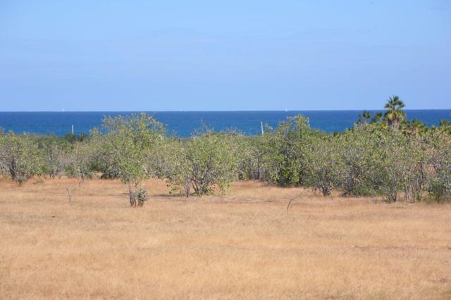 Buena Vista /Leonero Lot, East Cape, BS  (MLS #18-2726) :: Los Cabos Agent