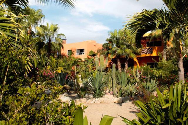 Camino A, Pacific, BS  (MLS #18-2859) :: Los Cabos Agent