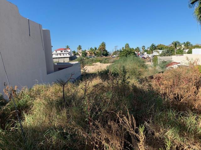 lot 17 Jarilla, San Jose del Cabo, BS  (MLS #18-2961) :: Los Cabos Agent