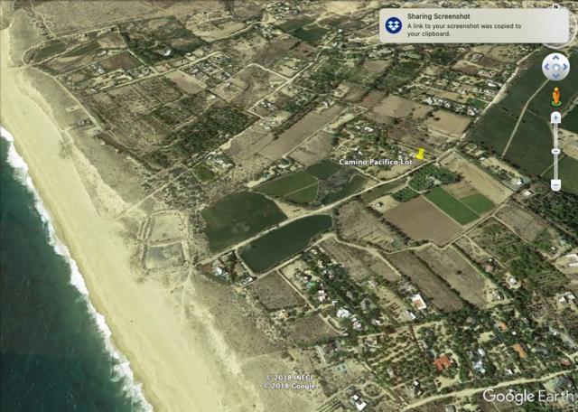 Fracc B Camino Pacifico, Pacific, BS  (MLS #18-3018) :: Los Cabos Agent