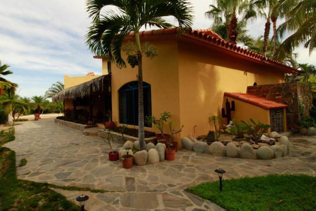 Calle Sin Nombre, Pacific, BS  (MLS #18-3044) :: Los Cabos Agent