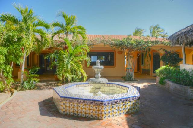 Casa Jardin - Rancho Pescadero, East Cape, BS  (MLS #18-3066) :: Own In Cabo Real Estate