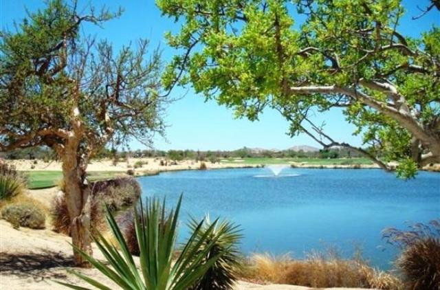Oasis Lot 26, San Jose Corridor, BS  (MLS #18-397) :: Los Cabos Agent