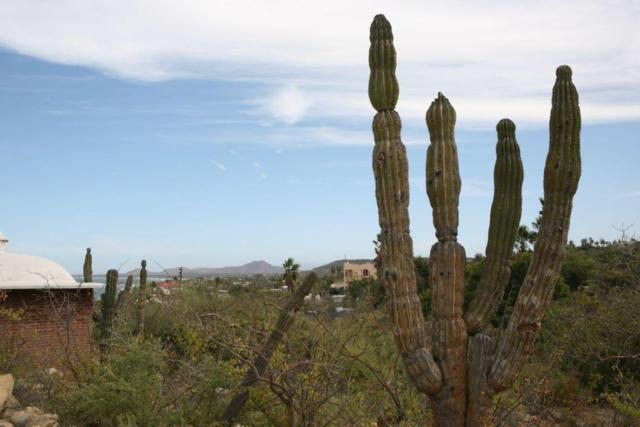 Shakespeare Lot 4, East Cape, BS  (MLS #18-701) :: Los Cabos Agent