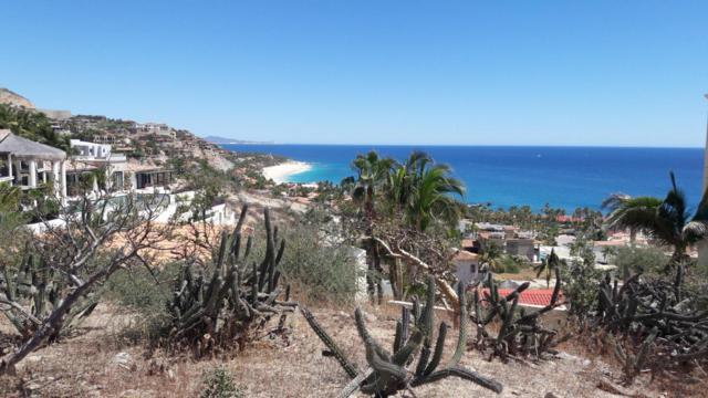 Costa Azul Y Tiburon, San Jose Corridor, BS  (MLS #18-761) :: Los Cabos Agent