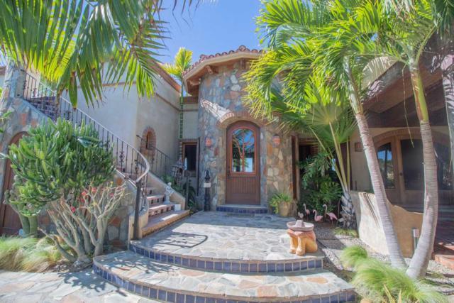 Calle Sin Nombre, Pacific, BS  (MLS #19-105) :: Los Cabos Agent
