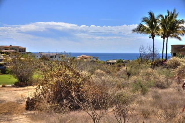 173 Calle Sistiaga, San Jose del Cabo, BS  (MLS #19-1147) :: Los Cabos Agent